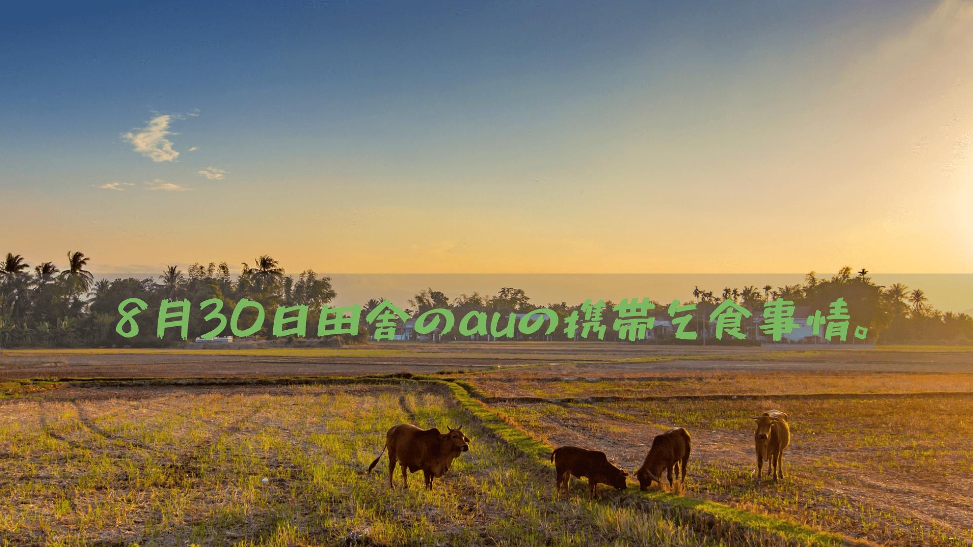 8月30日田舎のauの携帯乞食事情。