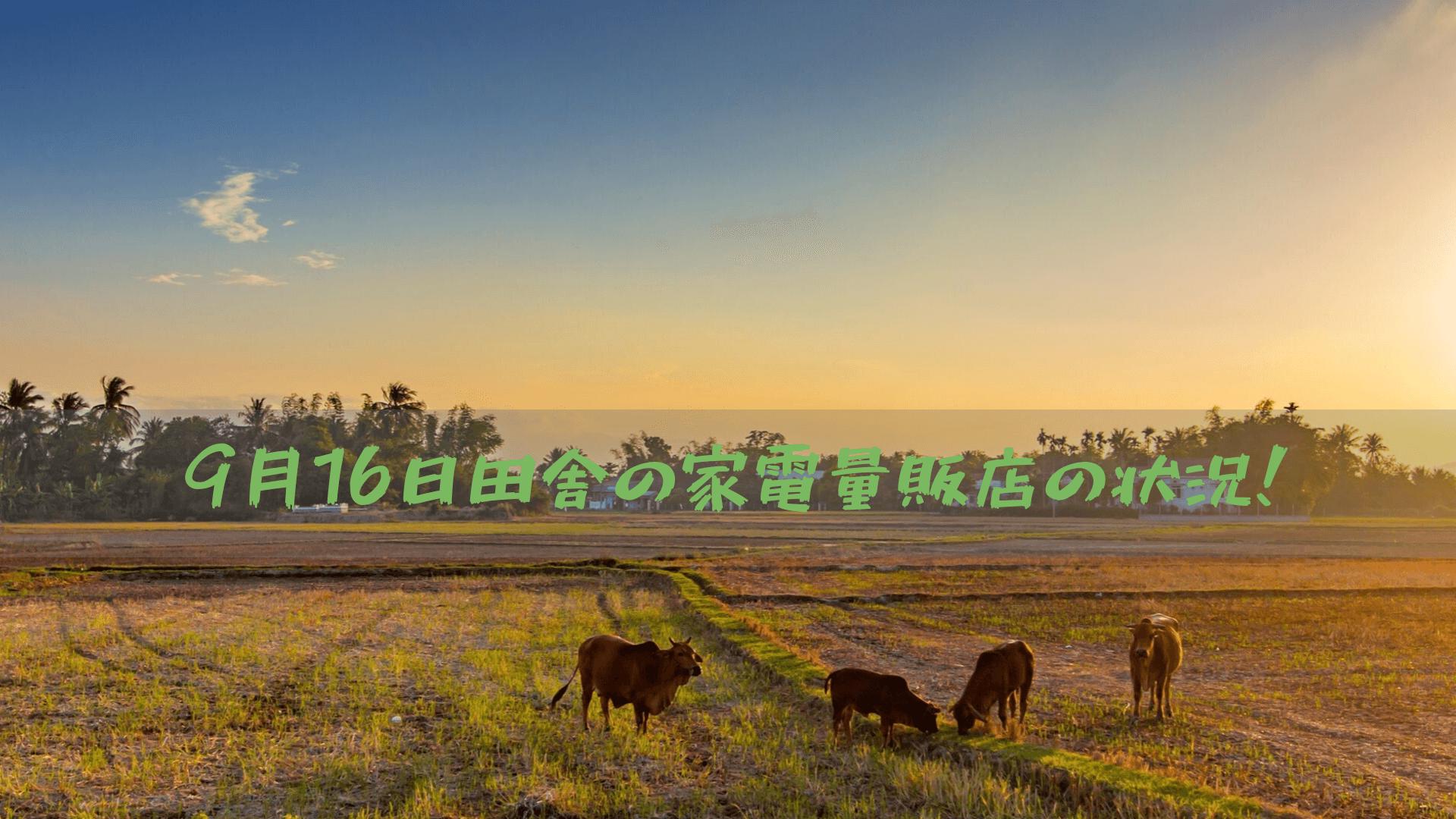 9月16日田舎の家電量販店の状況!
