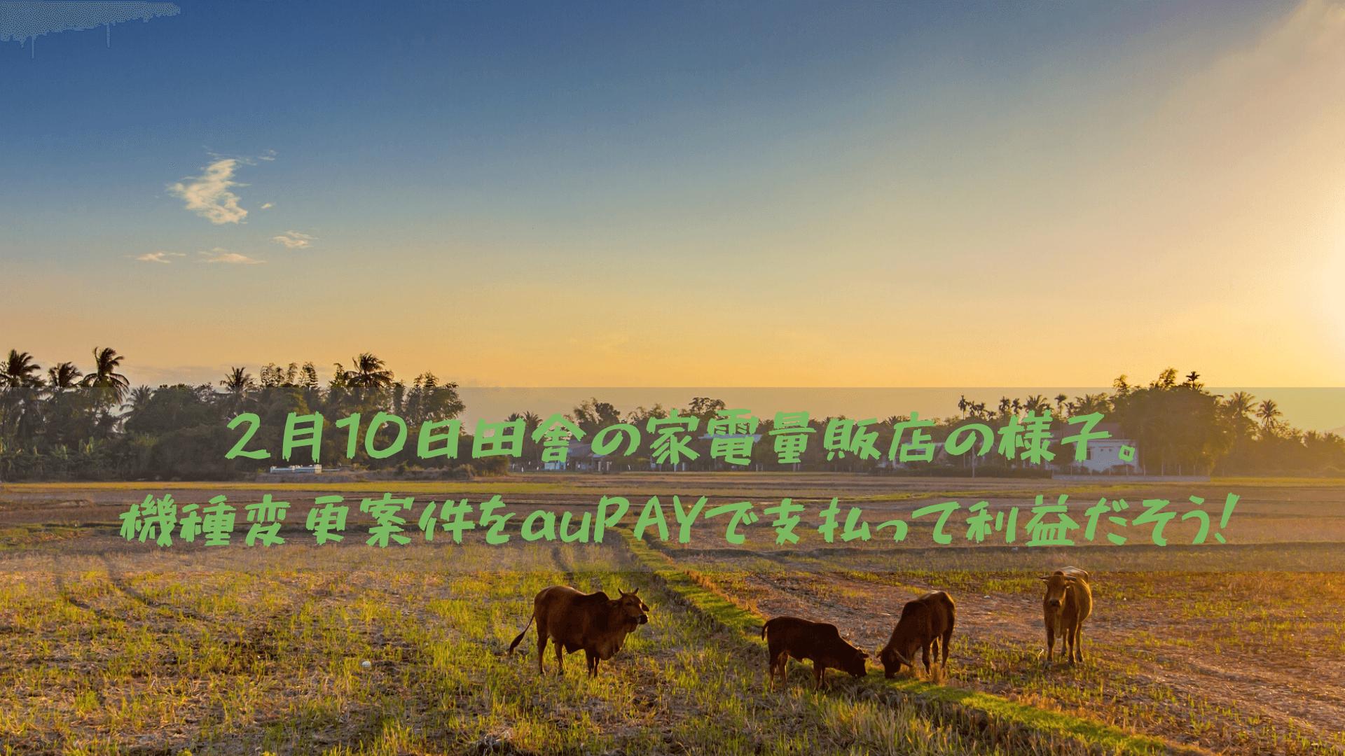2月10日田舎の家電量販店の様子。機種変更案件をauPAYで支払って利益だそう!