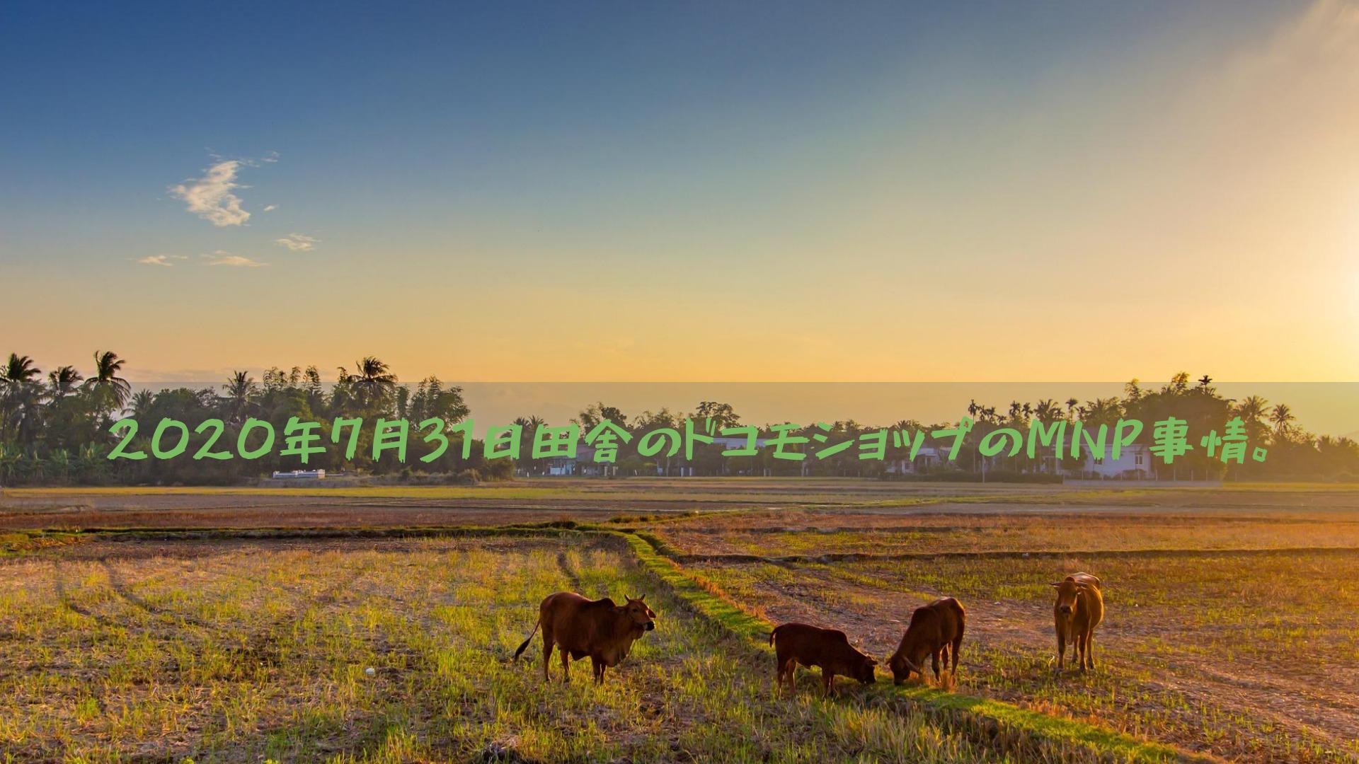 2020年7月31日田舎のドコモショップのMNP事情。
