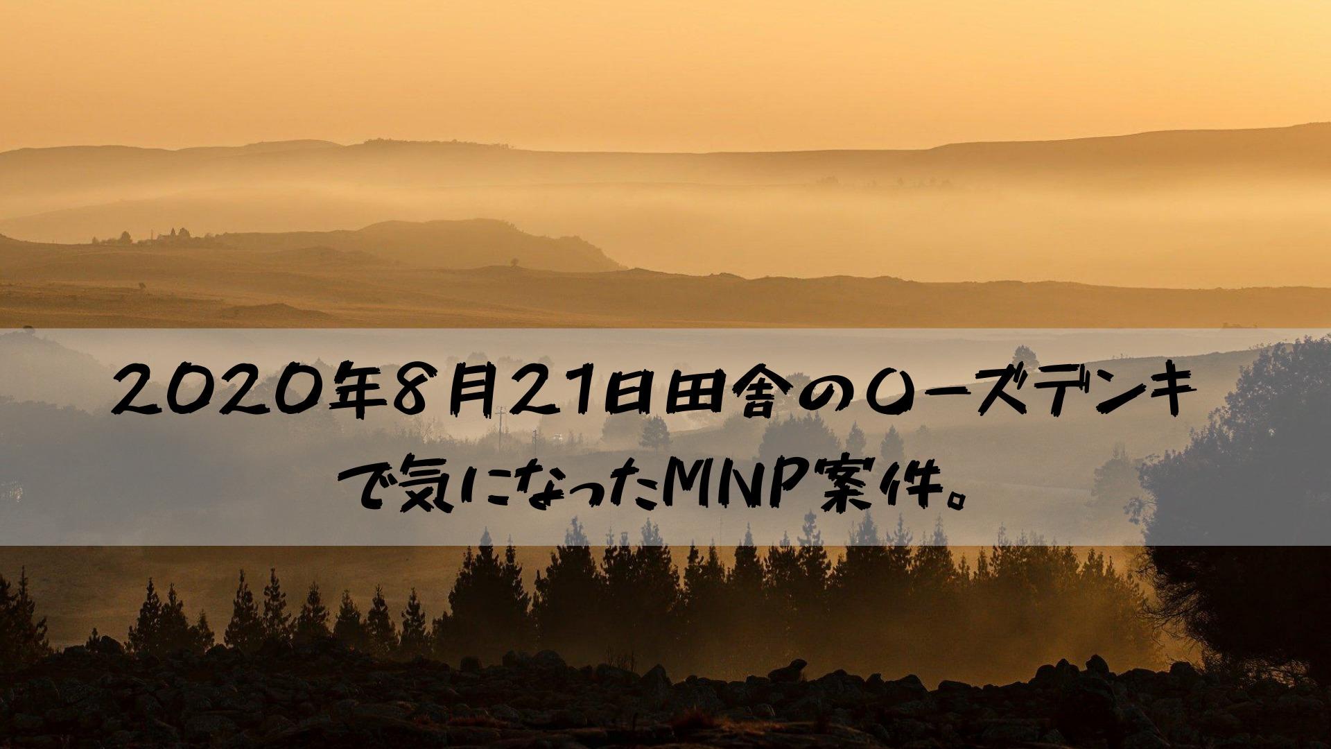 2020年8月21日田舎の〇ーズデンキで気になったMNP案件。
