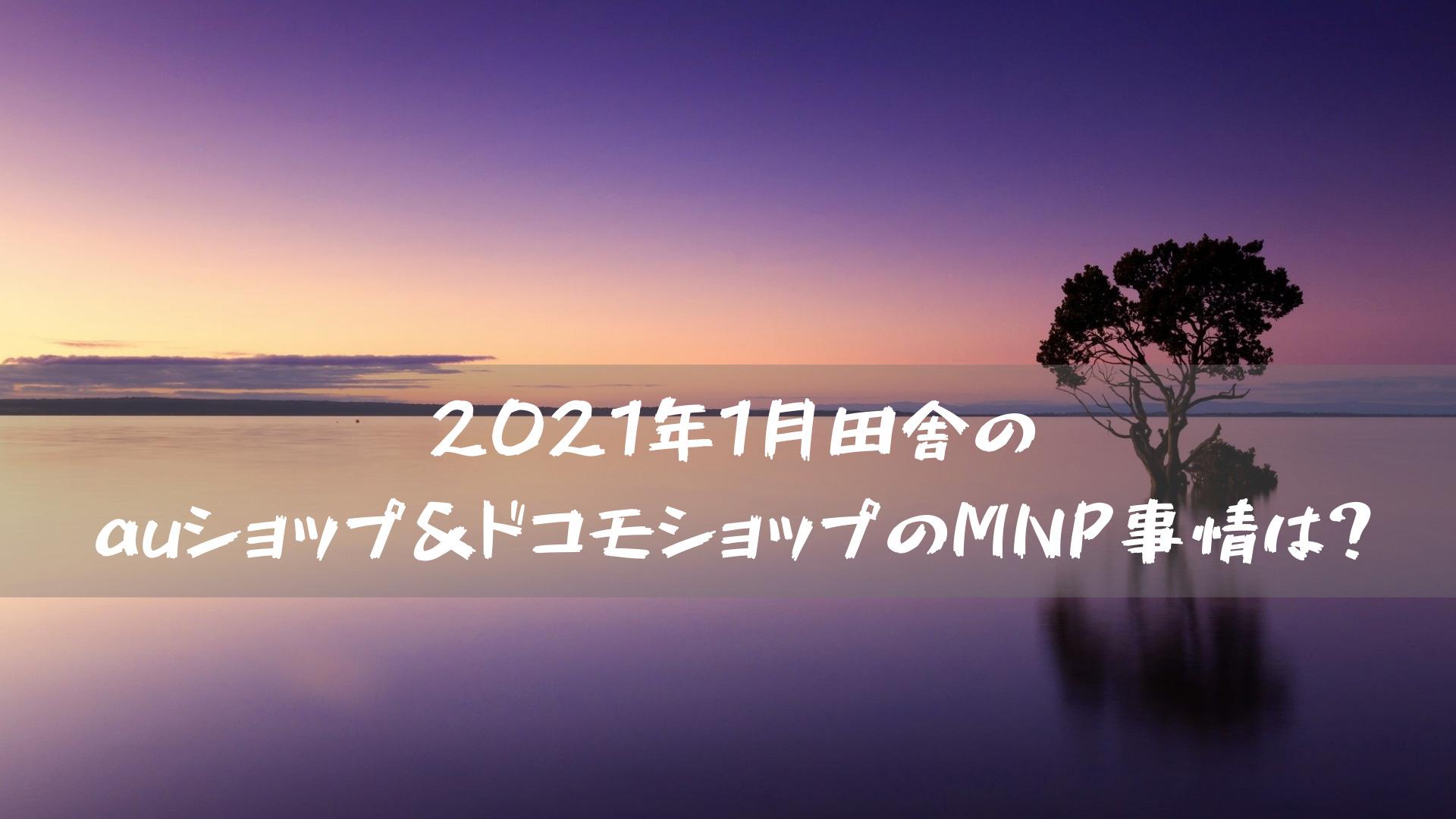 2021年1月田舎のauショップ&ドコモショップのMNP事情は?