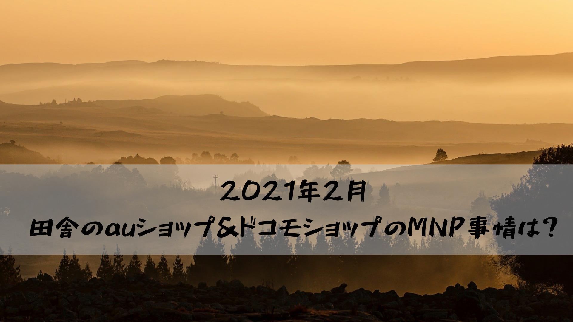2021年2月田舎のauショップ&ドコモショップのMNP事情は?